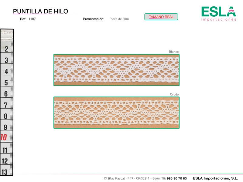 Puntilla de hilo, Familia 1186, Ref 1187