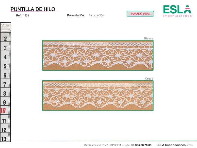 Puntilla de hilo, Familia 1436, Ref 1436