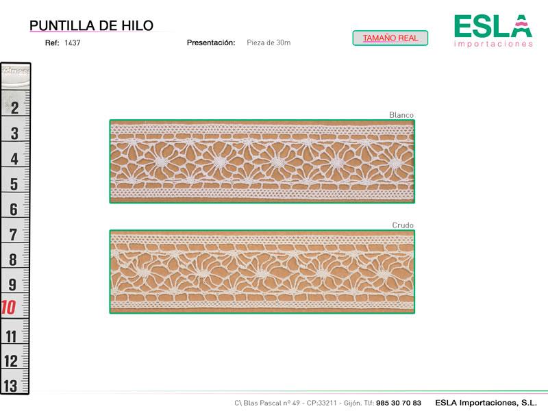 Puntilla de hilo, Familia 1436, Ref 1437