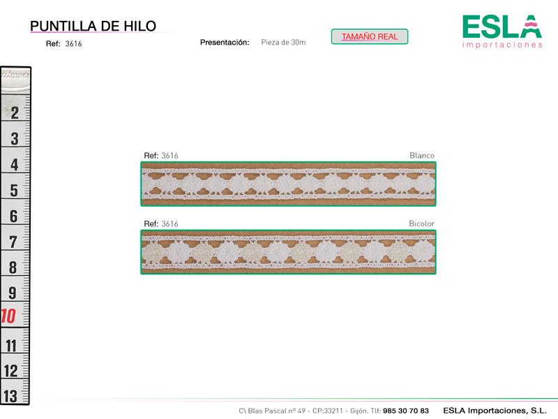 Puntilla de hilo, Familia 3615, Ref 3616