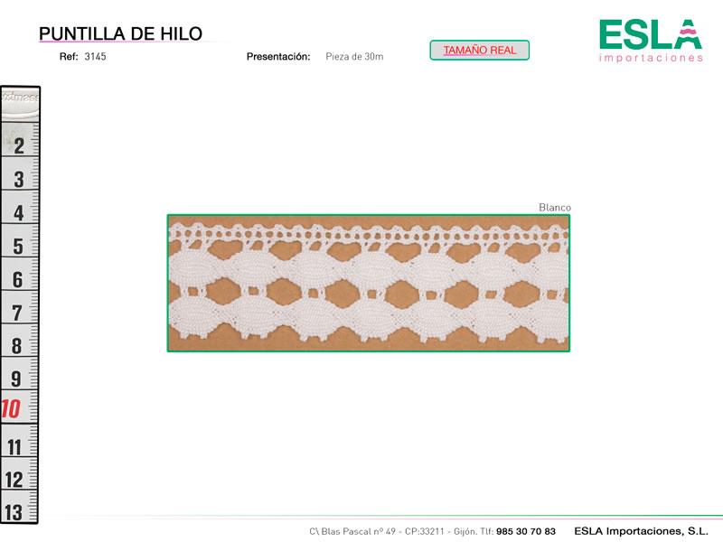 Puntilla de hilo, Familia 3145, Ref 3145