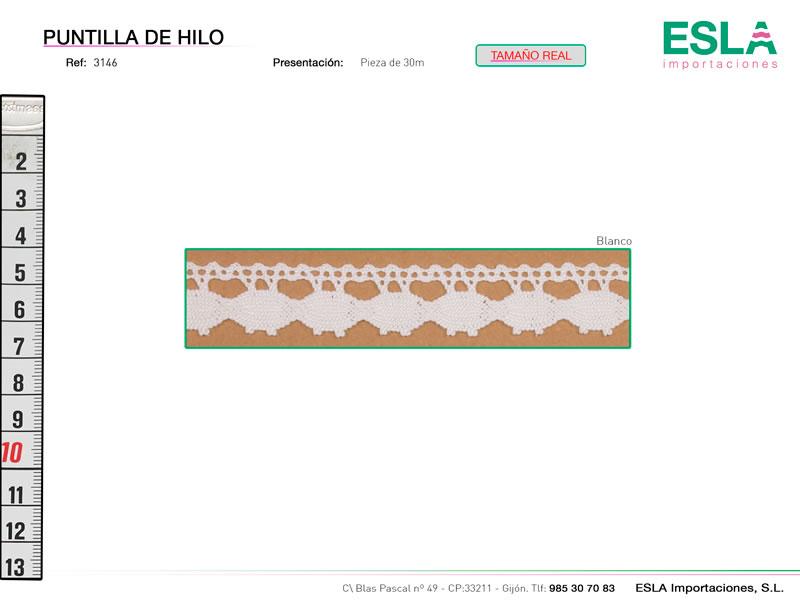 Puntilla de hilo, Familia 3145, Ref 3146