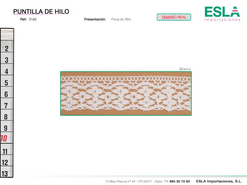 Puntilla de hilo, Familia 3158-M, Ref 3160