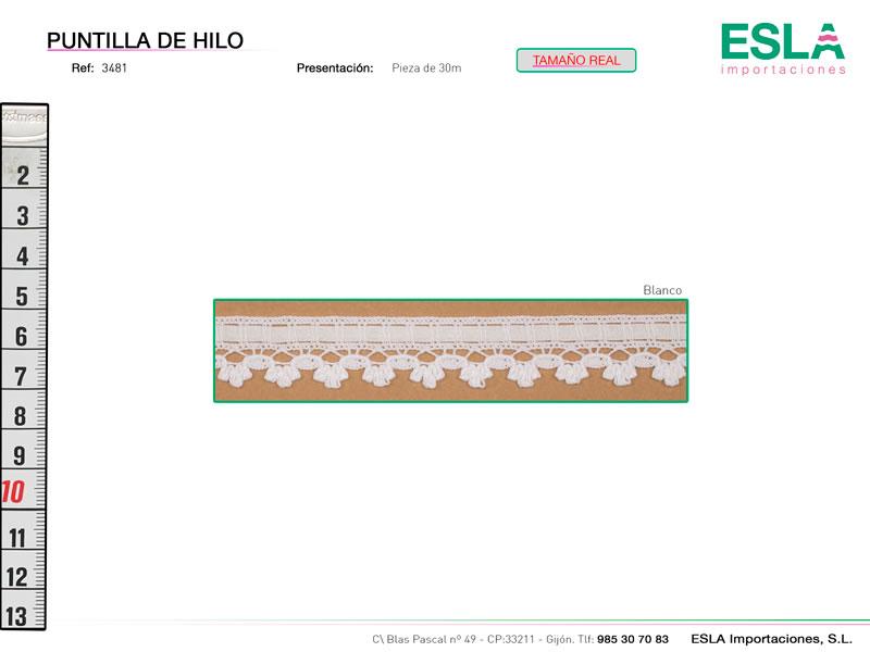 Puntilla de hilo, Familia 3480, Ref 3481