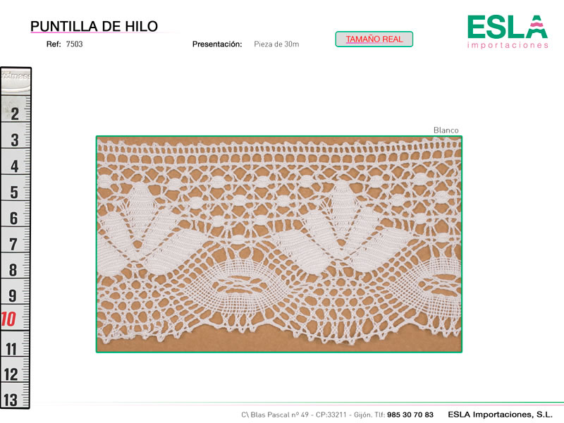 Puntilla de hilo, Familia 7503, Ref 7503