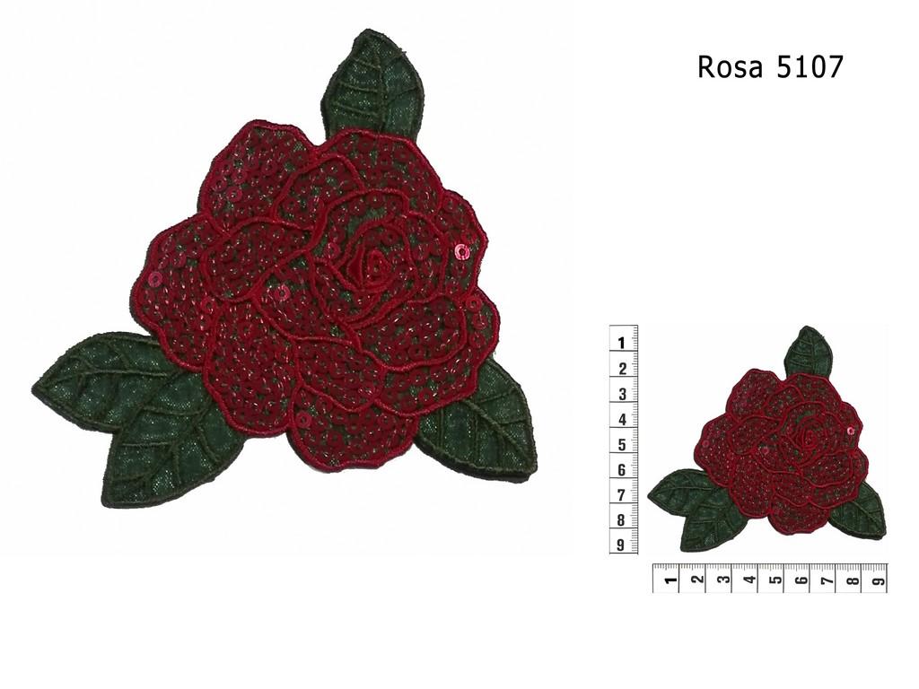 Rosa 5107