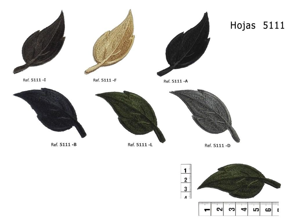 Hojas 5111